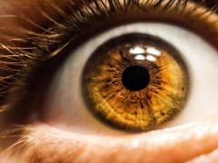 新型光学传感器模仿视觉
